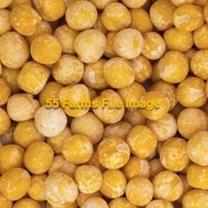 Medium peas   yellow