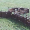 Blattner Cattle Chute w/ tub