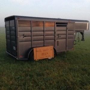 Medium horse trailer