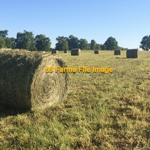 Medium hay   red clover rolls
