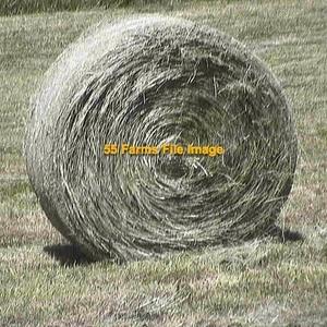 Medium brome hay