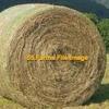 """Fescue Round Bales """"new crop"""""""