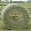 South Texas/ Oklahoma horse hay