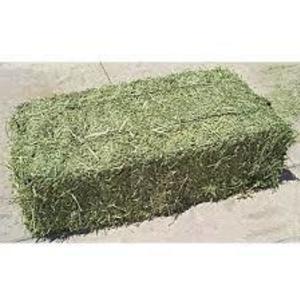 Medium small sq alfalfa bale
