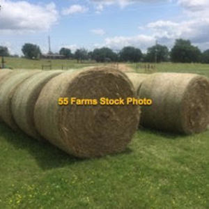 Medium 55 farms stock prairie hay photo