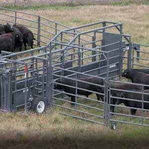 Medium sample portable cattle pens w chute